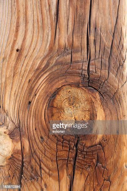 Timber Knoten
