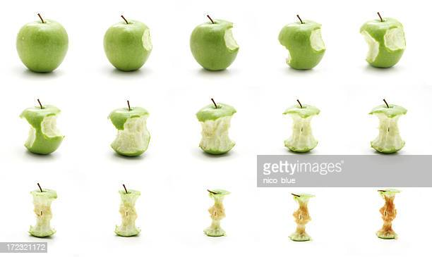 Timeline of eating an apple