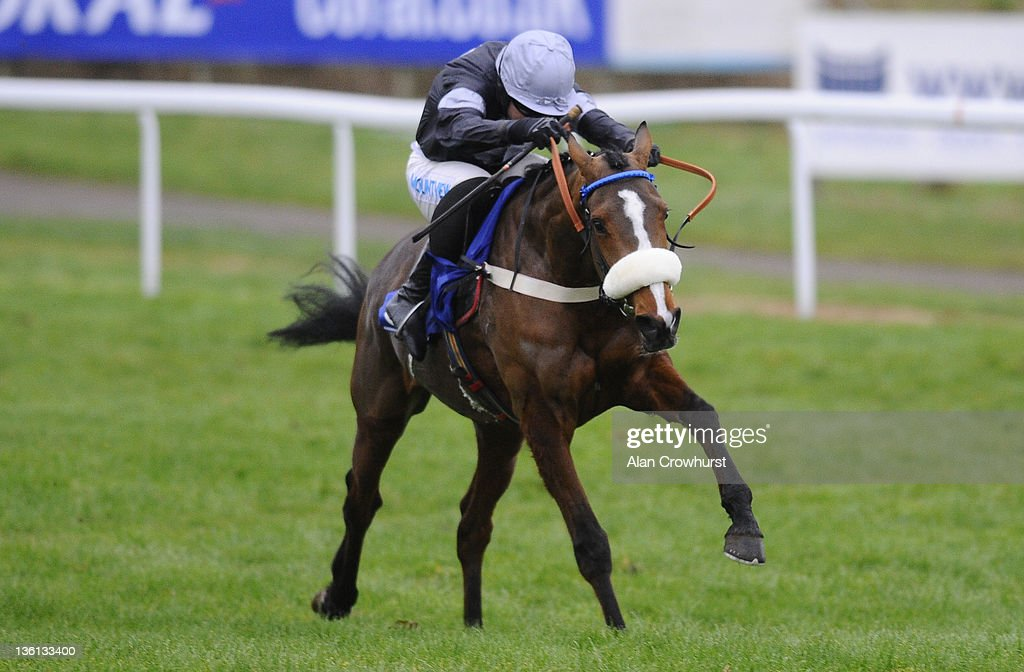 <a gi-track='captionPersonalityLinkClicked' href=/galleries/search?phrase=Timmy+Murphy&family=editorial&specificpeople=208759 ng-click='$event.stopPropagation()'>Timmy Murphy</a> riding Hollow Tree clear the last to win The Coral Future Champions Finale Juvenile Hurdle Race at Chepstow racecourse on December 27, 2011 in Chepstow, Wales.