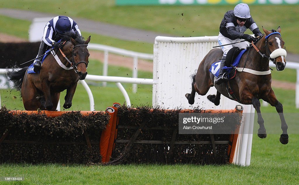 <a gi-track='captionPersonalityLinkClicked' href=/galleries/search?phrase=Timmy+Murphy&family=editorial&specificpeople=208759 ng-click='$event.stopPropagation()'>Timmy Murphy</a> riding Hollow Tree (R) clear the last to win the Coral Future Champions Finale Juvenile Hurdle Race at Chepstow racecourse on December 27, 2011 in Chepstow, Wales.