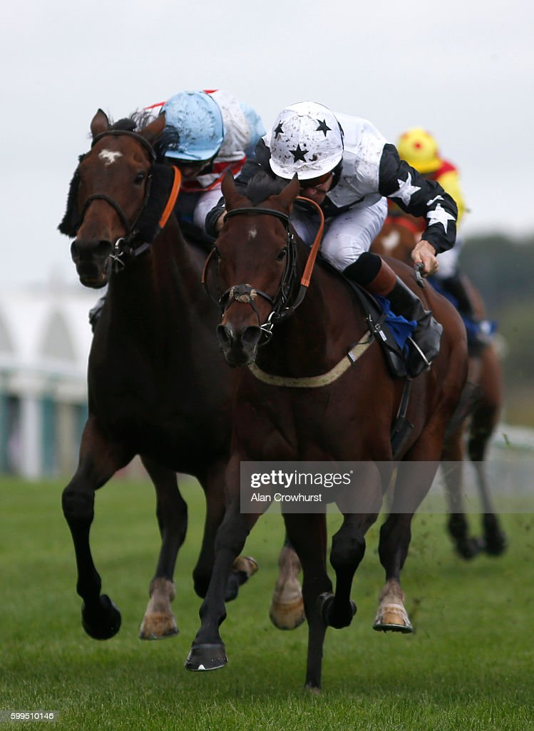 Timmy Murphy riding Pick A Little win The Jason 'The Donkey' Jones Handicap Stakes at Brighton racecourse on Septmber 05, 2016 in Brighton, England.