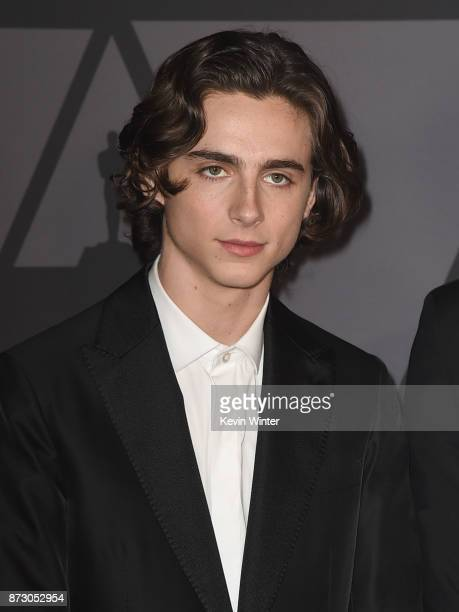 Timothée Chalamet attends the Academy of Motion Picture Arts and Sciences' 9th Annual Governors Awards at The Ray Dolby Ballroom at Hollywood...