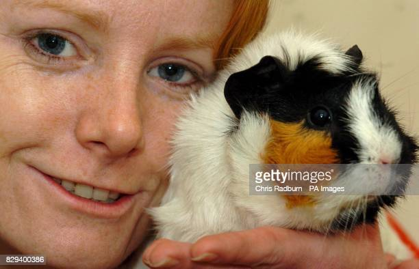 Tina McNaughton from Puckeridge in Hertfordshire holds Chauncy one of eight guinea pigs that were brought back to life by Fireman after they suffered...