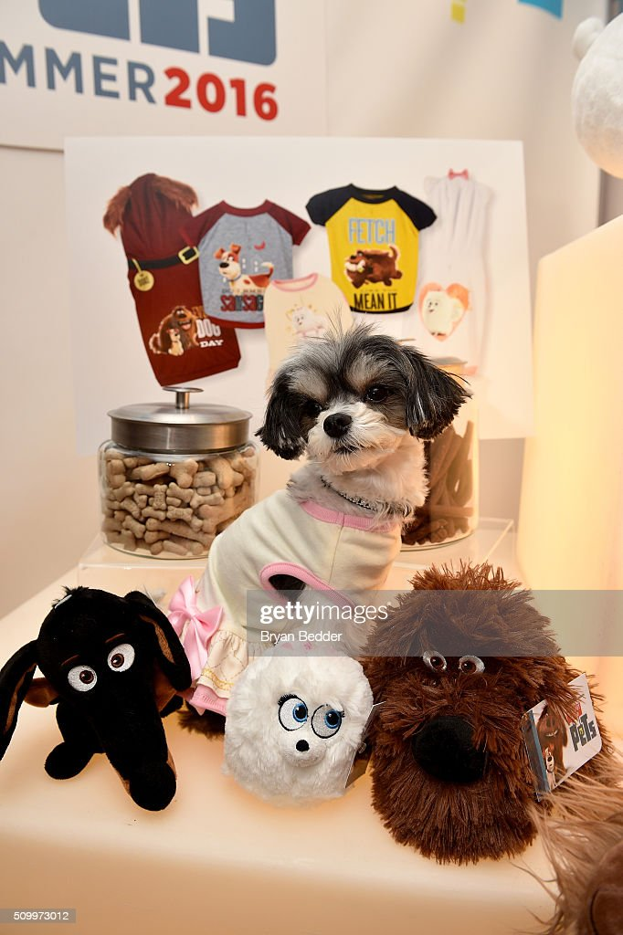 Tinkerbelle the Dog sits among PetSmart's exclusive pet collection during The Secret Life of Pets toy line reveal at Toy Fair on February 13, 2016 in New York City.