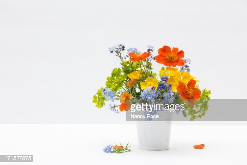 Tiny bucket of tiny flowers stock photo getty images for Bucket of flowers papercrafting