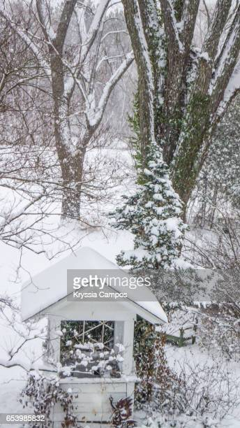 Tiny Greenhouse in Winter Snowstorm, Ohio, USA