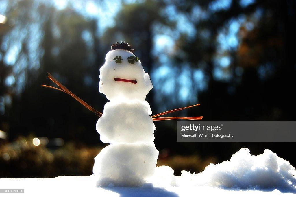 Tiny snowman with clover eyes : Stock Photo