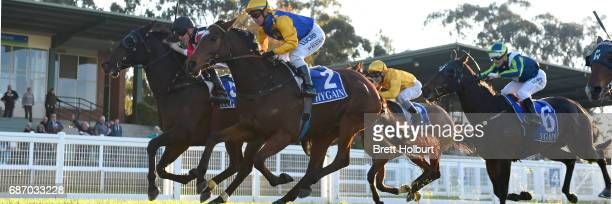 Tiny's Legacy ridden by Ben Allen wins the ClassicBet BM64 Handicap at Seymour Racecourse on May 23 2017 in Seymour Australia
