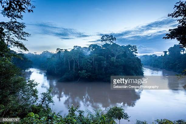 Tiputini river shoe horse at dawn
