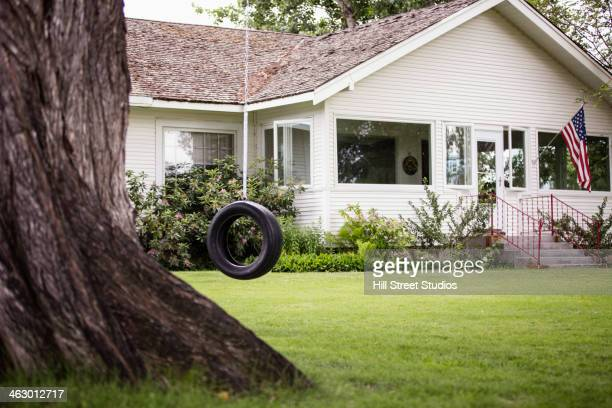 Tire swing hanging in backyard