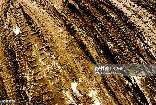 Tire tracks in dirt, elevated view