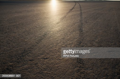 Tire tracks on dry lake bed