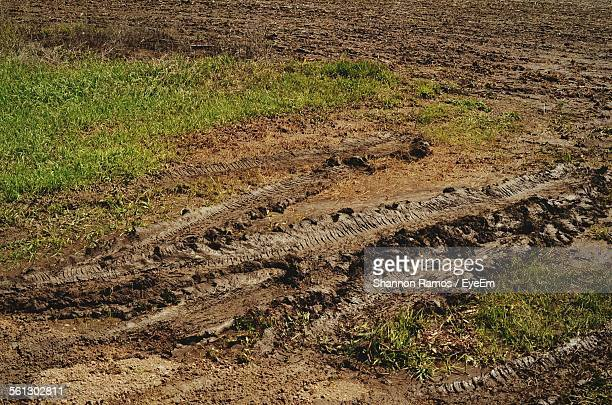Tire Tracks On Muddy Field