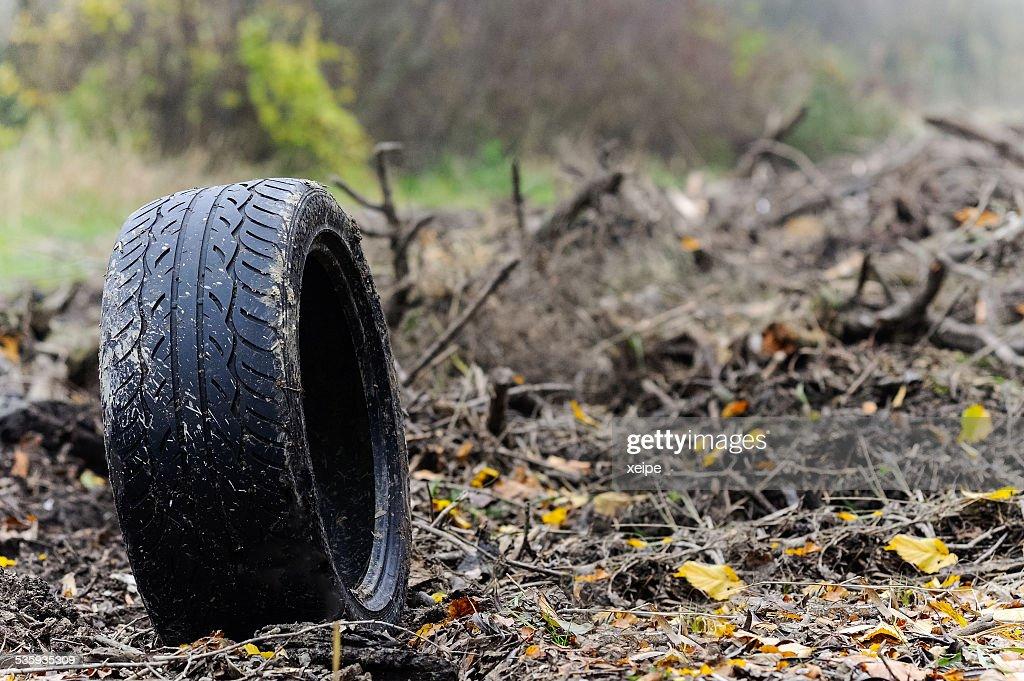 Tires on landfill : Stock Photo