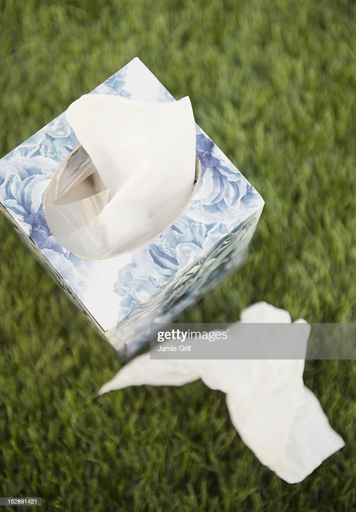 Tissue box and tissues on green grass