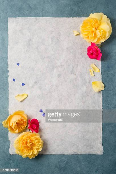 Tissue paper with roses, copy space