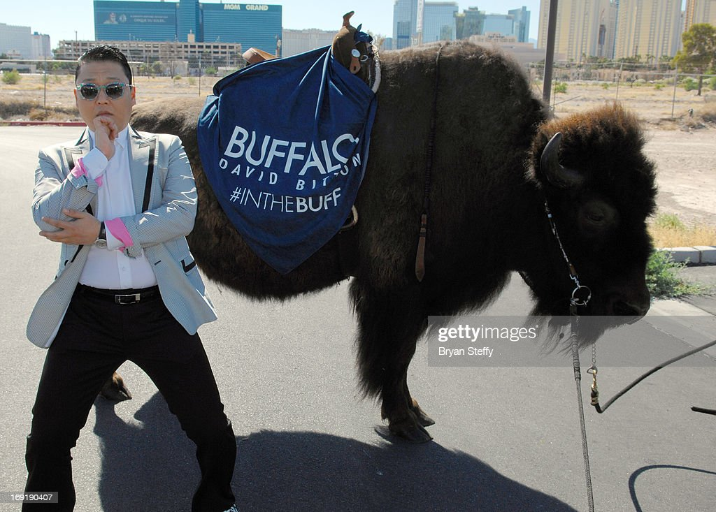 To celebrate the Billboard Music Awards After Party, hosted by Buffalo David Bitton, Psy posed for pictures with the official Buffalo of the Billboard Music Awards on May 19, 2013 in Las Vegas, Nevada.