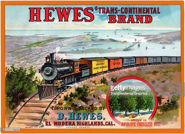 To celebrate the railroad connection east coast to west in the United States grower D Hughes commissions a label with train and west coast imagery...