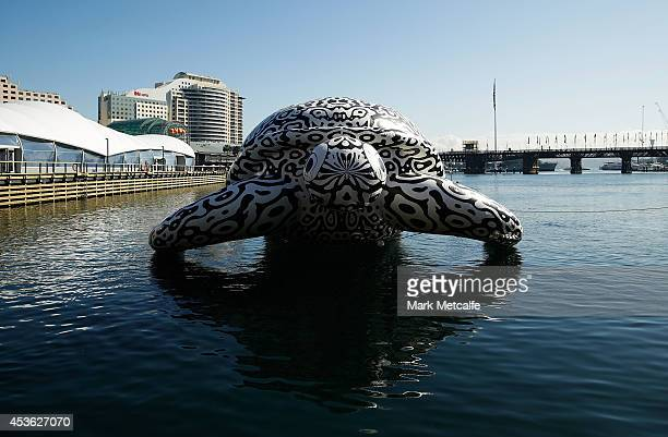 To celebrate the World's First Undersea Art Exhibition a 5 metre tall 15 metre long Sea Turtle is seen at Darling Harbour on August 15 2014 in Sydney...