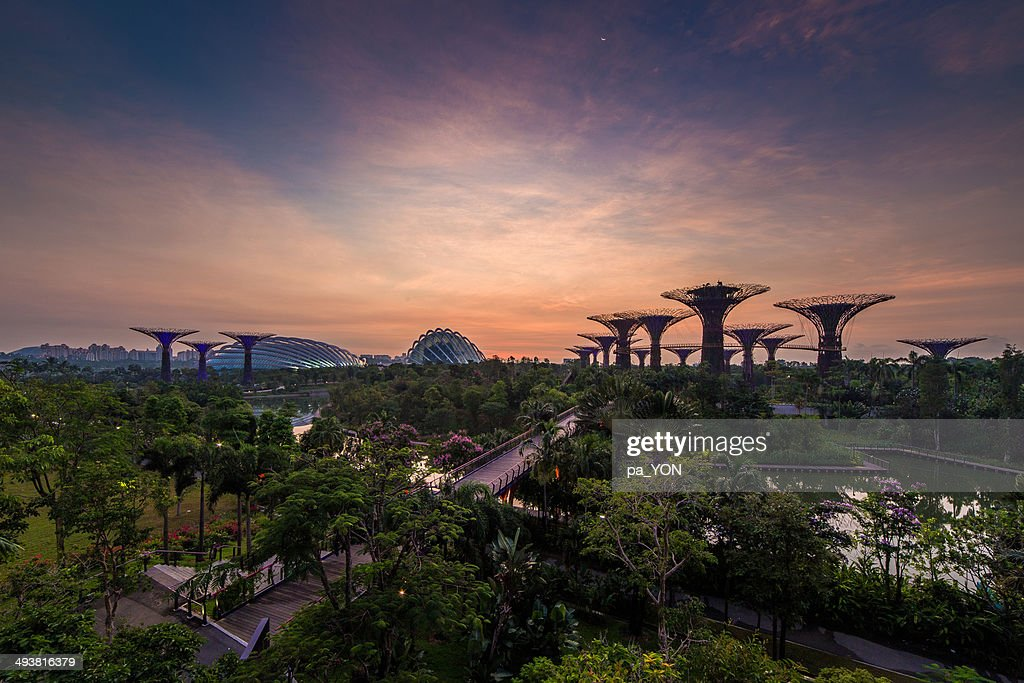 To Garden by the bay