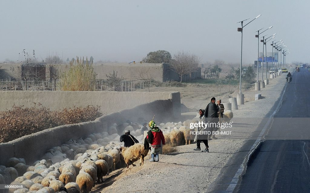 To go with 'AfghanistanUnrestTaliban' FOCUS by Ben Sheppard In this photograph taken on December 11 2014 Afghan boys lead a flock of sheep along the...
