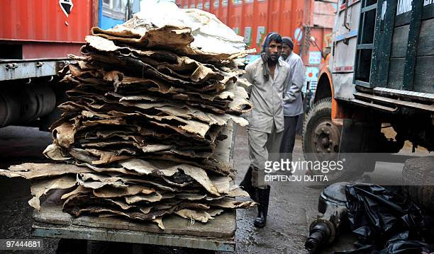 To go with AFP story by Yasmeen Mohiuddin INDIAINDUSTRYPOLLUTIONWATERLEATHER An Indian labourer walks beside animal skins stacked in a trolley inside...