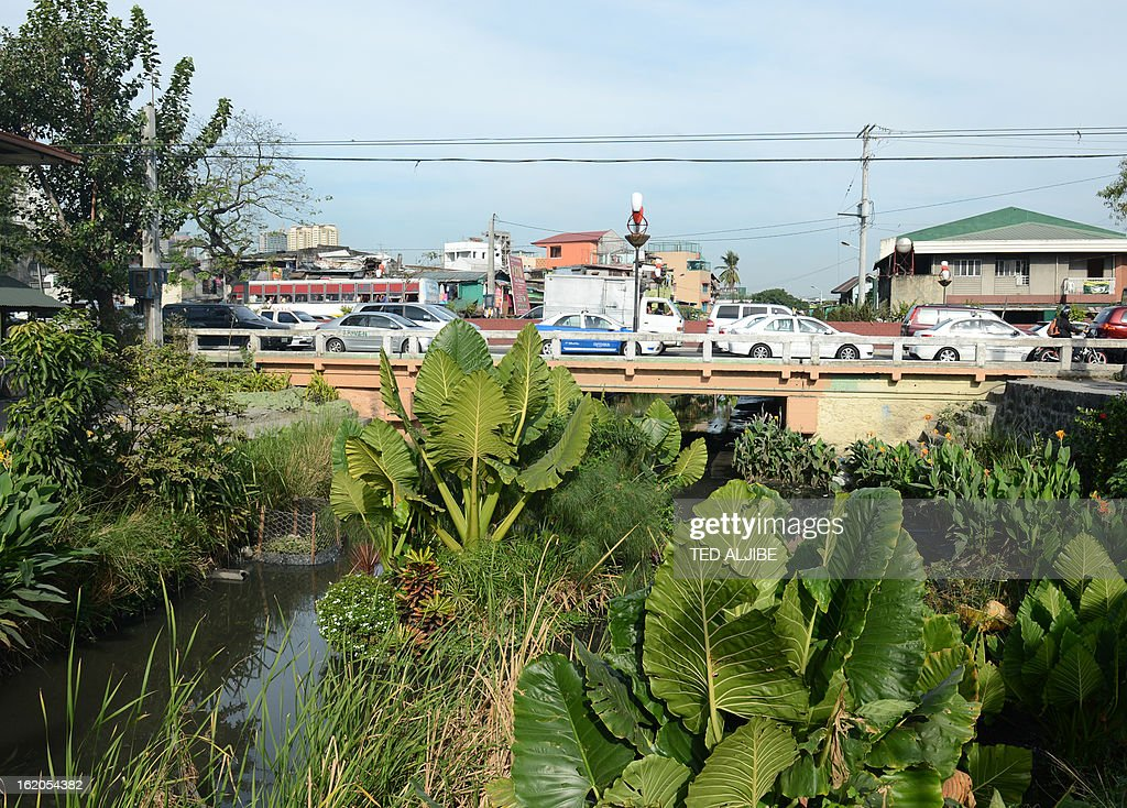 To Go With AFP story 'Philippines-Environment-Pollution-Water-Poverty' by Karl Malakunas In this picture taken on February 18, 2013, vehicles traverse past a bridge along Estero de Paco tributary amid lush greenery in Manila. At Estero de Paco, a 2.9-kilometre (1.8-mile) tributary that a few years ago was one of the most polluted in the city, shanty homes have been replaced with tree-lined boardwalks while water-treatment machines now nestle amid plants.