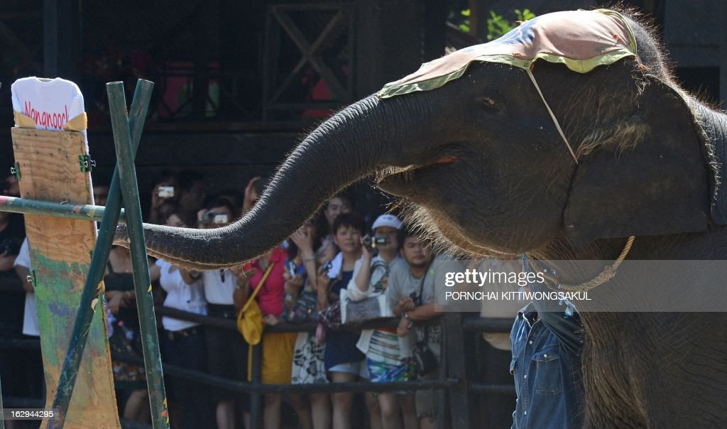 To go with 'Environment-wildlife-CITES-Thailand-tourism,FOCUS' by Amelie Bottollier-Depois In this picture taken on March 1, 2013 an elephant performs for tourists during a show in Pattaya. Smuggling the world's largest land animal across an international border sounds like a mammoth undertaking, but activists say that does not stop traffickers supplying Asian elephants to Thai tourist attractions. AFP PHOTO / PORNCHAI KITTIWONGSAKUL