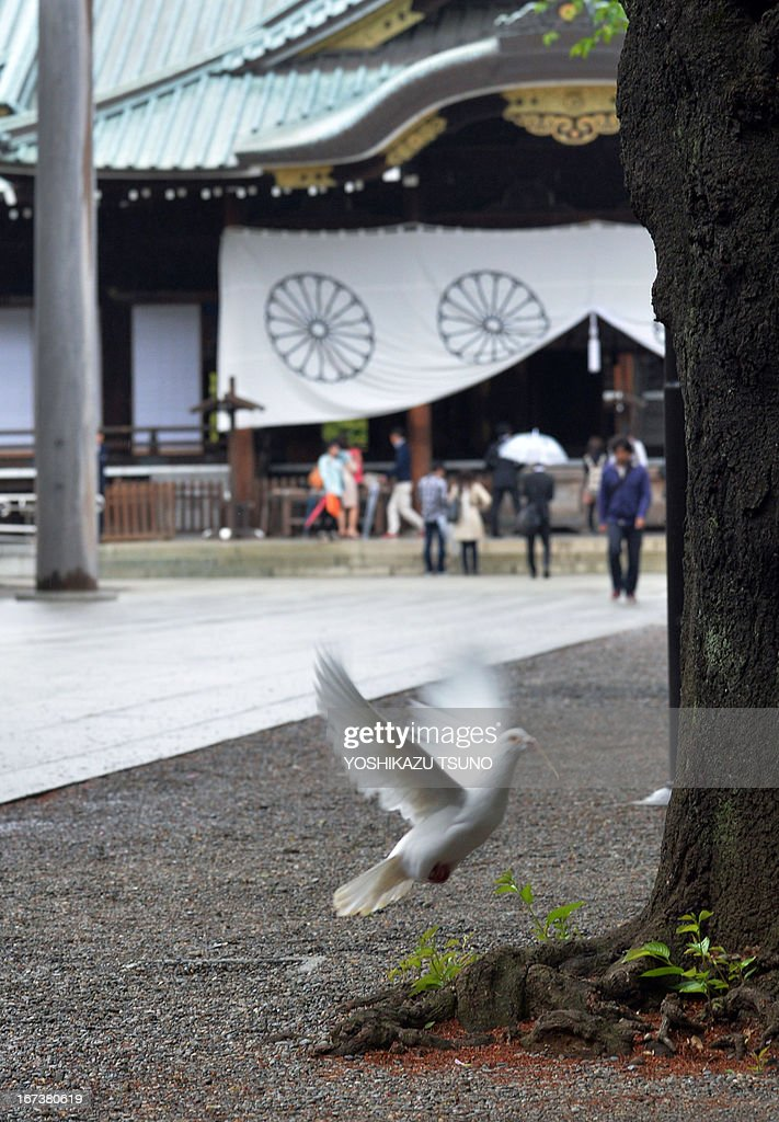 To go with Japan-politics-diplomacy-WWII-China-SKorea-Yasukuni,FOCUS by Hiroshi Hiyama In this picture taken on April 24, 2013, a white pigeon flies at the controversial Yasukuni shrine in Tokyo. For Japan's neighbours the leafy Yasukuni shrine is a brutal reminder of Tokyo's imperialist past and wartime aggression, but for many ordinary Japanese it is merely a place to worship ancestors who died fighting for the country. AFP PHOTO / Yoshikazu TSUNO