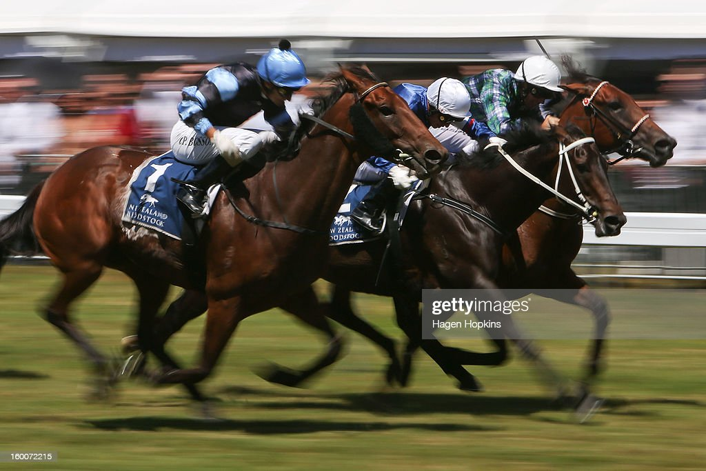 L to R, Soriano ridden by Opie Bosson, Lucky Country ridden by Vinnie Colgan and High Fashion ridden by Hayden Tinsley battle to the line in the 1600m Group III Tiger Prawn Desert Gold Stakes during Wellington Cup Day at Trentham Racecourse on January 26, 2013 in Wellington, New Zealand.