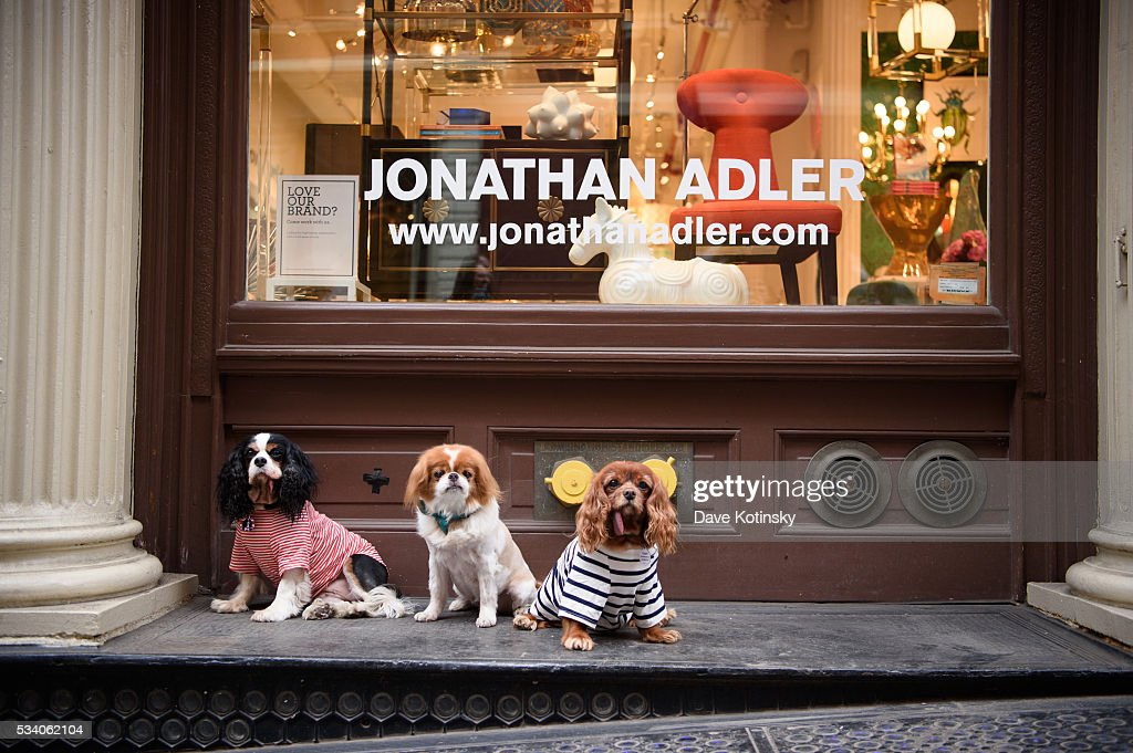 Toast and friends pose at the Jonathan Adler Toasts @ToastMeetsWorld At The Launch Of TOASTHAMPTON on May 24, 2016 in New York City.