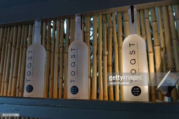 Toast Vodka at Designer and Founder Anielka Jean Louis Launch of Anie Louis Lux Swimwear Collection at The Raleigh Hotel In Miami Beach on July 29...