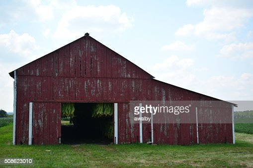 Tobacco Barn : Stock Photo