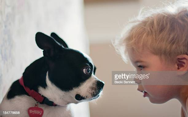 Toddler boy and puppy stare at eachother
