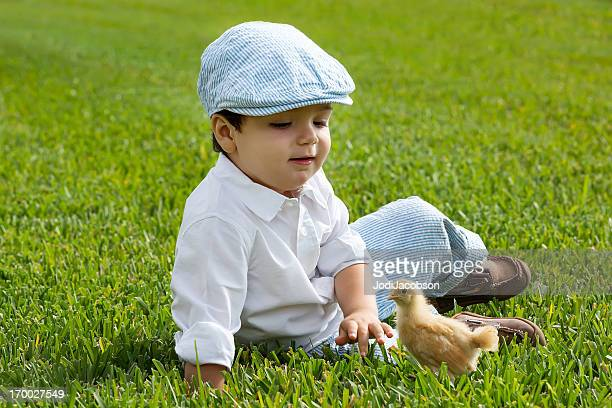 Toddler boy with a baby chick
