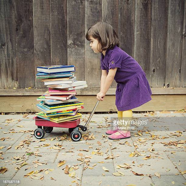 Toddler Girl and Books
