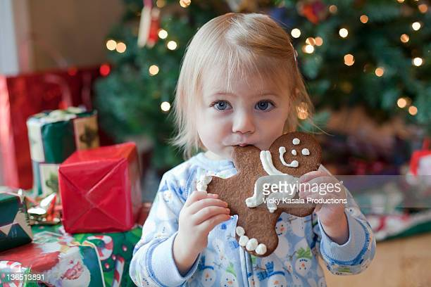 Toddler girl eating gingerbread man cookie.
