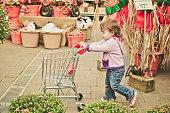 Toddler girl shopping at a nursery.