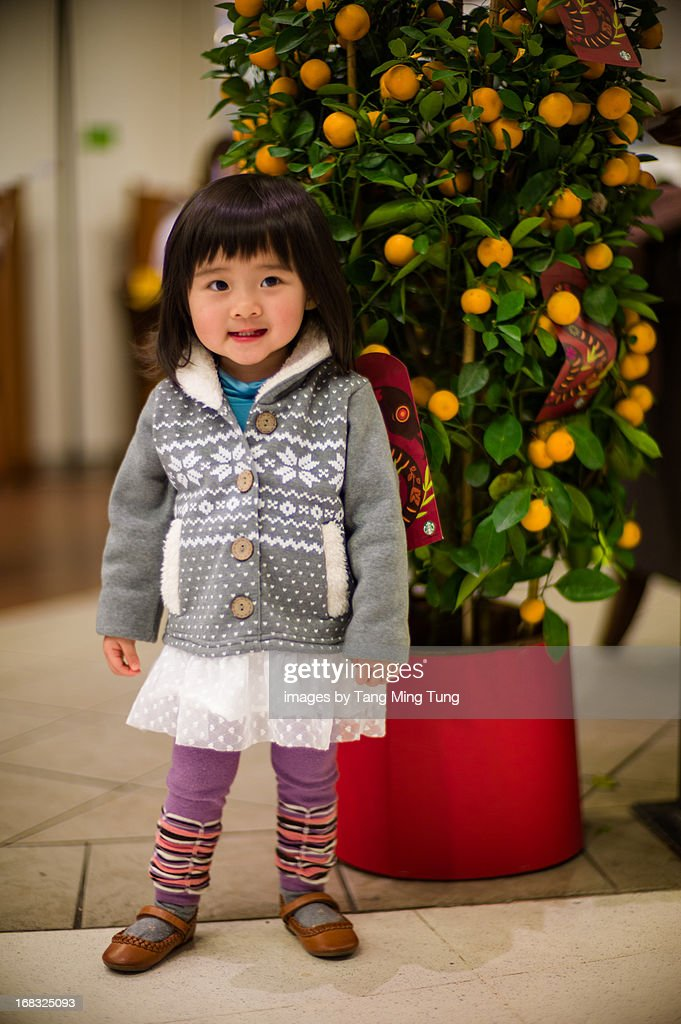 Toddler girl standing in fornt of a tangerine tree : Stock Photo