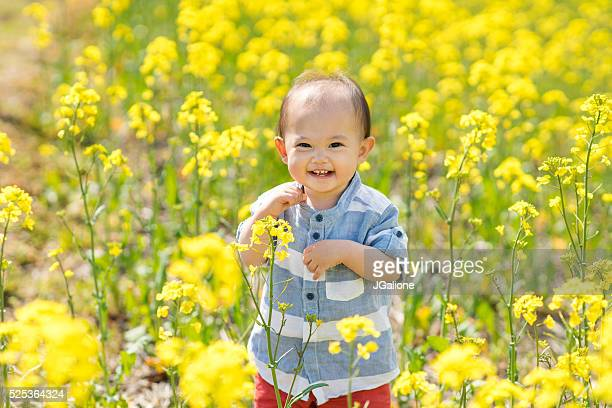 Toddler in a field of flowers