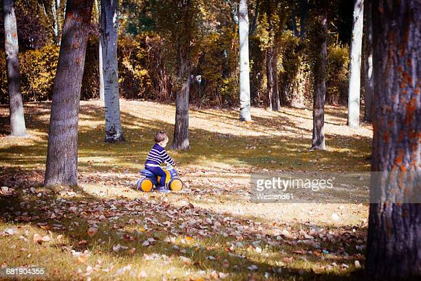 Toddler on bobby car in autumnal park