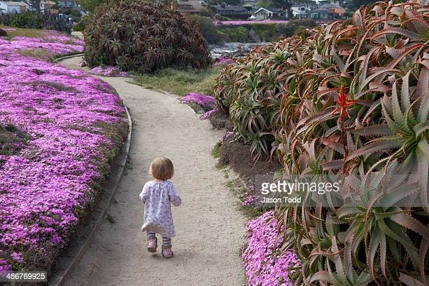 Toddler walking along flowery coastal trail