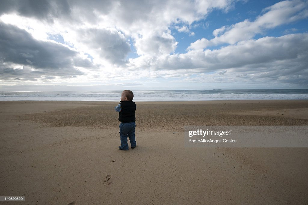 Toddler walking on beach, rear view : Stock Photo