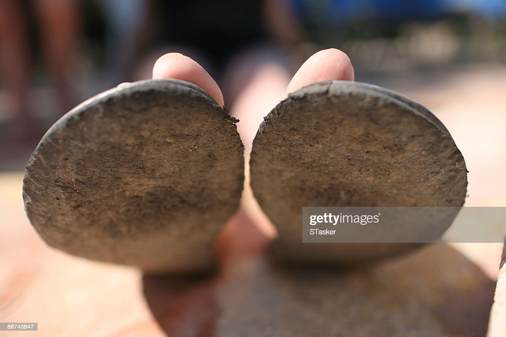Toes : Stock Photo