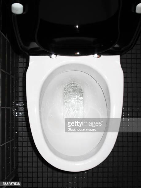 Toilet Bowl, High Angle View