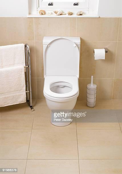 Tazza del water foto e immagini stock getty images - Tazza del bagno ...