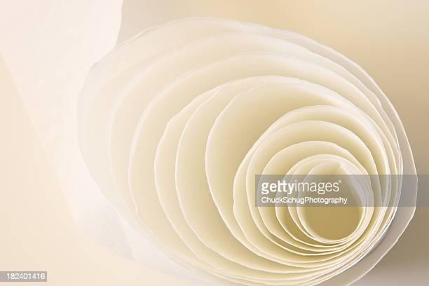 Toilette Seidenpapier Konzentrisch Rolls