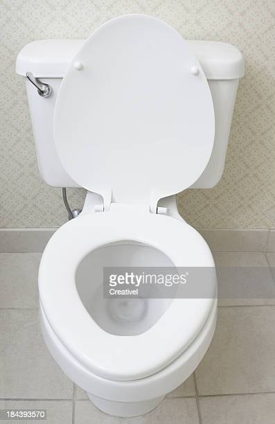 Toilet Bowl Stock Photos And Pictures Getty Images