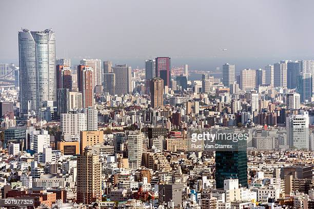 Tokyo aerial view of buildings, skyline