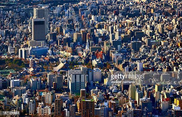 Tokyo bird's-eye vie